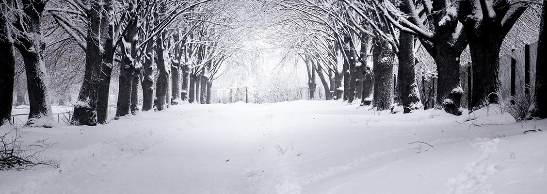winter-storm-preparation-copy2